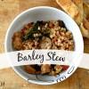 -15 degree stew.