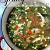 Spring chicken soup.