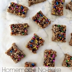 Homemade No-Bake Granola Bars